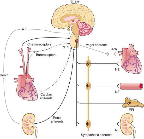 magas vérnyomás a HIV-ben asd 2 hipertóniát kezel
