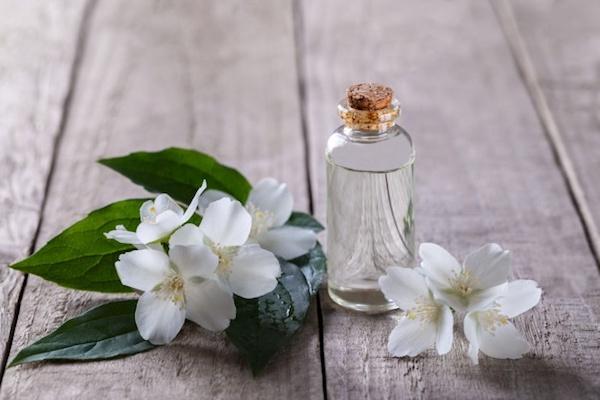 Akác, bodza, jázmin: illatos gyógynövényeink