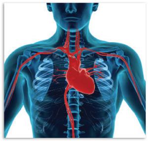 idegek magas vérnyomás és stressz magas vérnyomás rossz tianshi