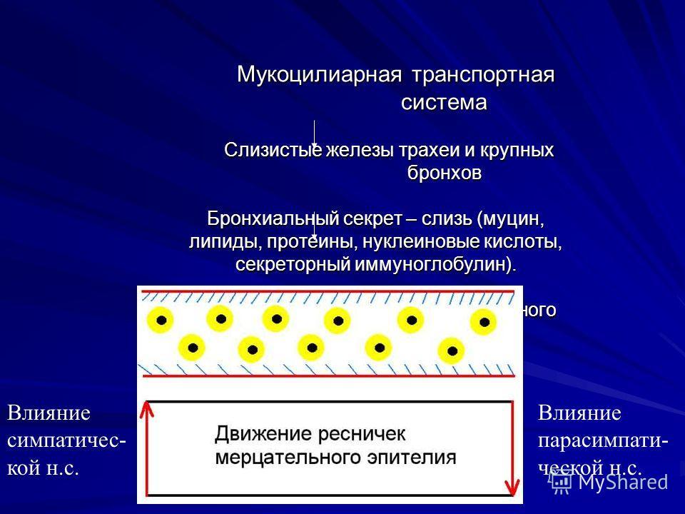 hipertónia miatt auskultáció