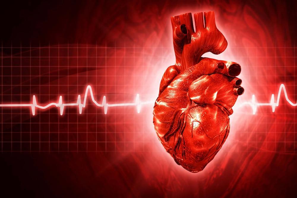 A véradás egészséges? Íme, az orvos véleménye - Egészség | Femina