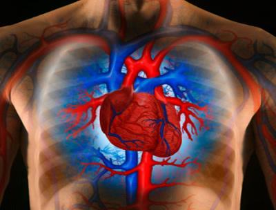 hipertónia egész életen át a magas vérnyomás kezelésére szolgáló eljárások