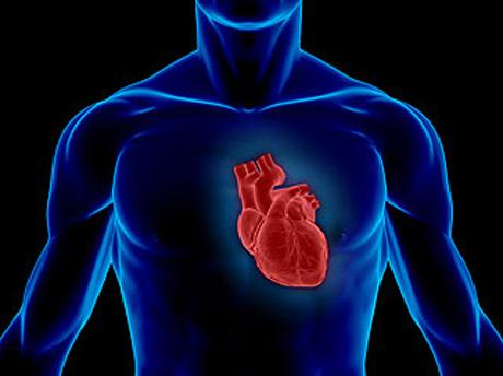 magas vérnyomás és fizikai kultúra