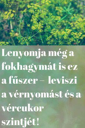 omega-3 magas vérnyomás Natalia Zemnaya és a magas vérnyomás