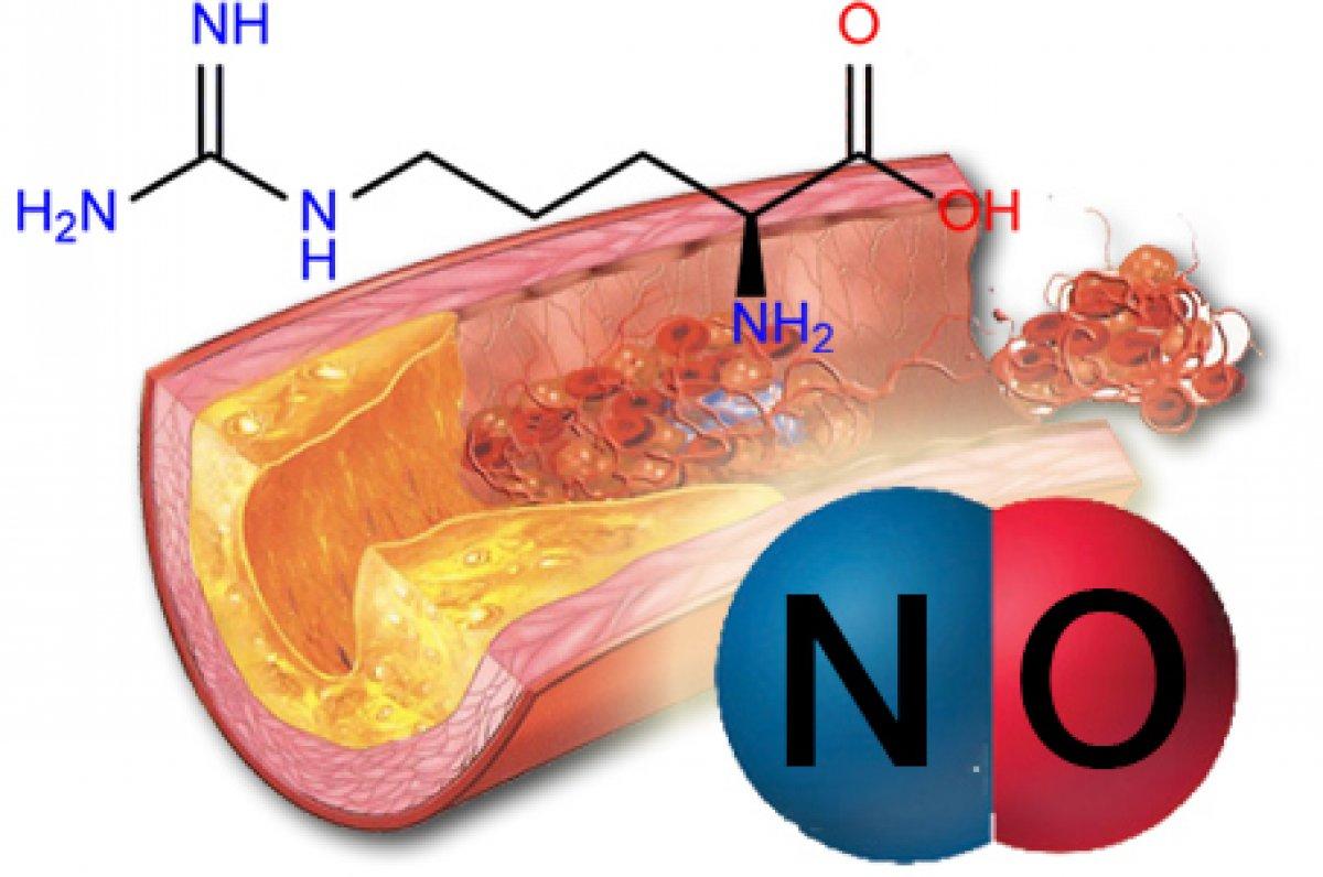 nitrogén-monoxid magas vérnyomás esetén elemzések a magas vérnyomás diagnosztizálására