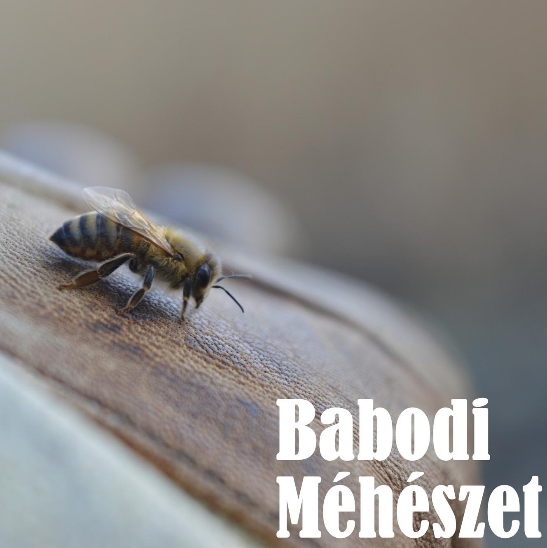 mezei méh és magas vérnyomás torna hipertóniás képekhez