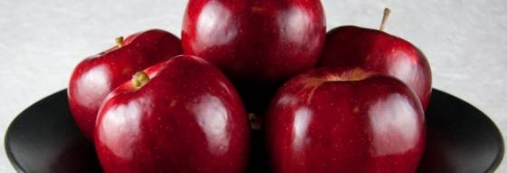 alma és magas vérnyomás