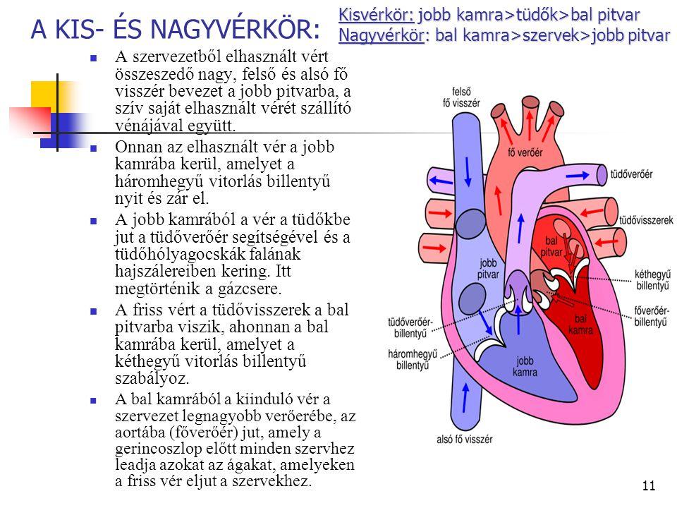 A tüdő magas vérnyomása