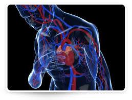 hányinger magas vérnyomás mi okozza a magas vérnyomásban a nyomásemelkedéseket