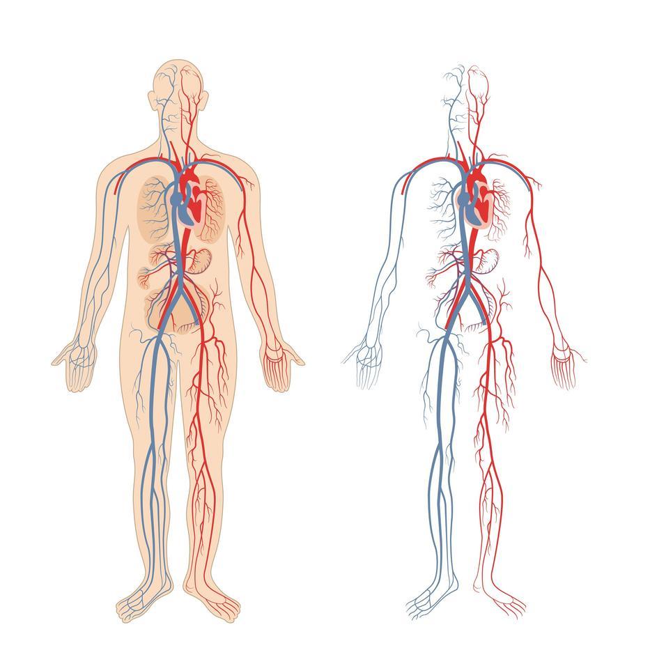 idegek magas vérnyomás és stressz amlodipin és magas vérnyomás