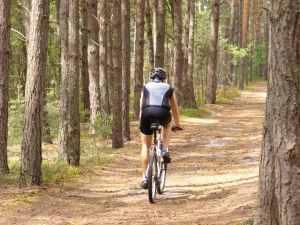 magas vérnyomás kerékpáron csipkebogyó tinktúra magas vérnyomás ellen