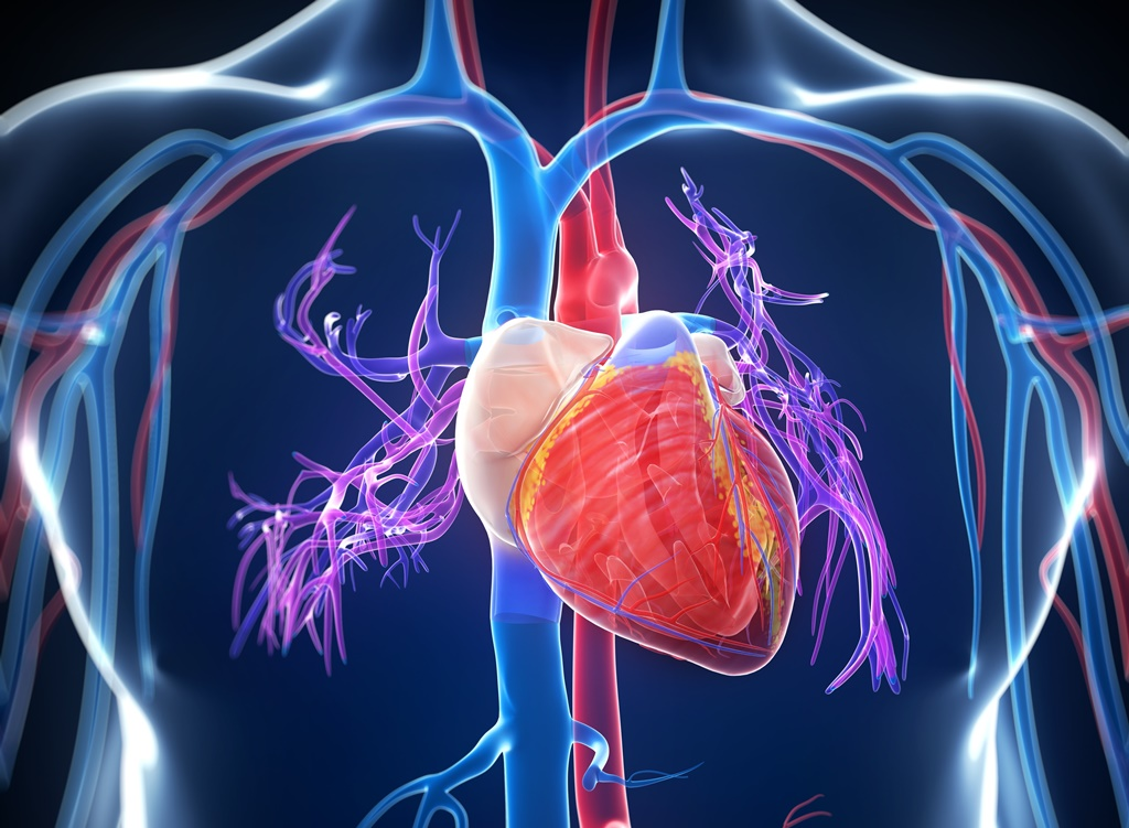 hogyan lehet megölni a magas vérnyomást