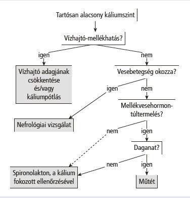 A kálium és a fokhagyma hatékony a magas vérnyomás ellen